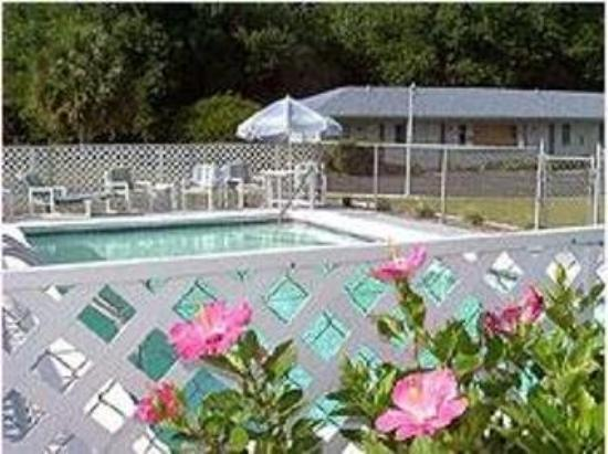 Lake View Motel: POOL