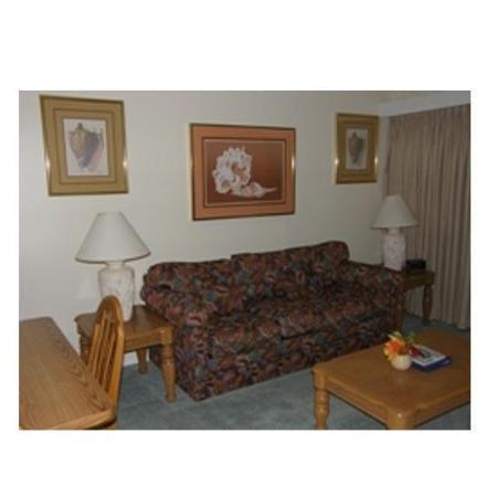 Ocean Creek by Palmetto Vacation Rentals: Living Room
