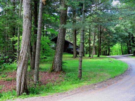 Stowe Cabins in the Woods: Exterior View
