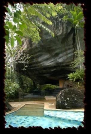 Boulder Garden Hotel : Interior