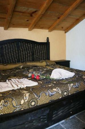 Hotel Antigua: Guest Room