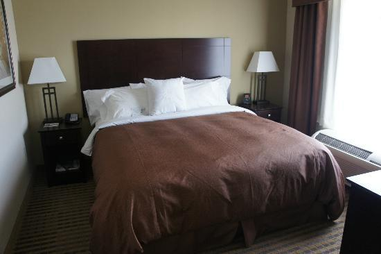 Homewood Suites by Hilton Minneapolis-New Brighton : Bedroom