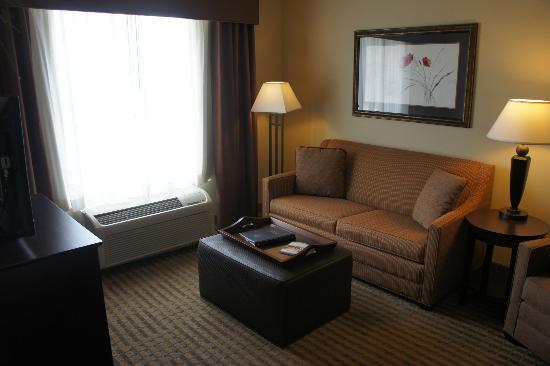 Homewood Suites Minneapolis - New Brighton: Living room