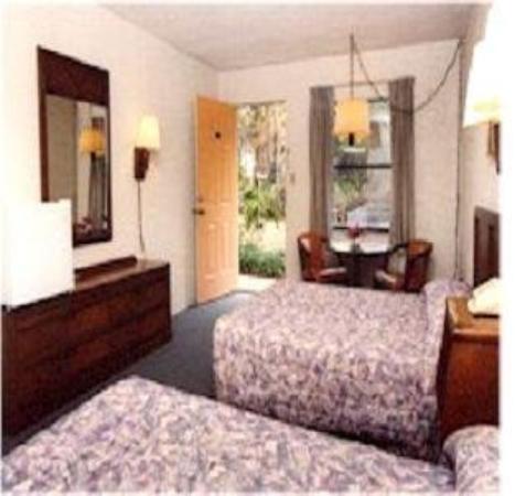 Gator Motel: Guest Room