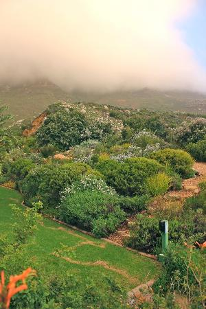 The Twelve Apostles Hotel and Spa: Hotel grounds