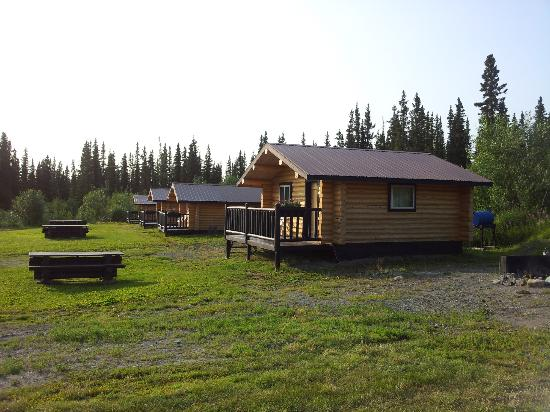 Golden Spruce Cabins: View of other cabins from ours