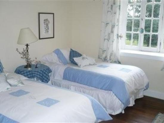 El Magnolio Bed and Breakfast: Guest Room