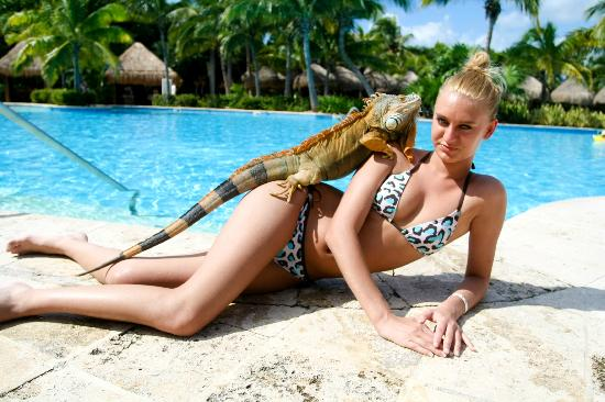 Plage d'Akumal: My daughter with iguana in Iberostar Paraiso Beach hotel.