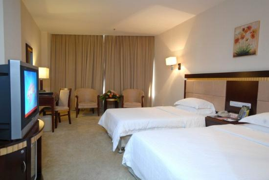 Skyer Gold Coast Hotel: Guest Room