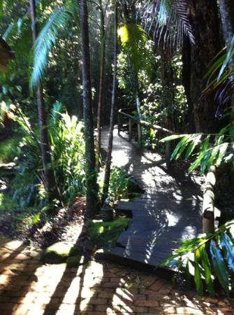 Secrets on the Lake: Walkway leading to the bush spa