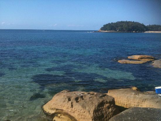 view to Shelly beach from scenic walkway