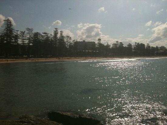 Shelly Beach : looking back to manly beach