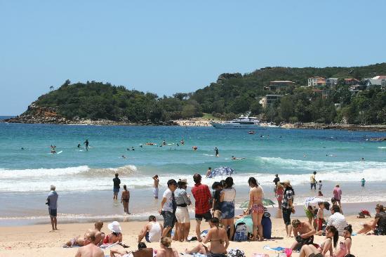 Manly Beach : summer fun