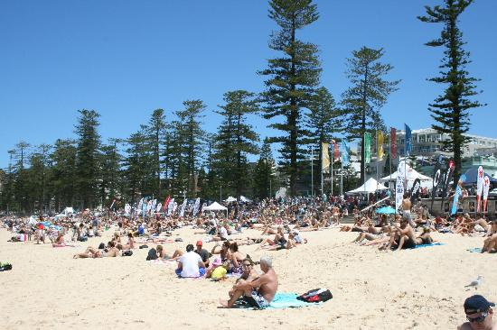 Manly Beach : surfing festival time