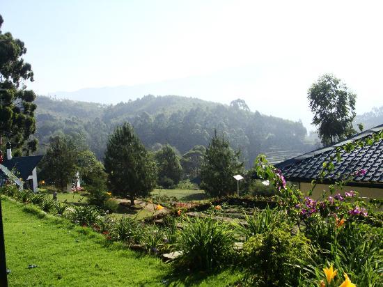 Camp Noel: View