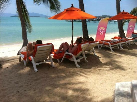 سيكريت جاردن بيتش ريزورت: Secret Garden Beach Resort 
