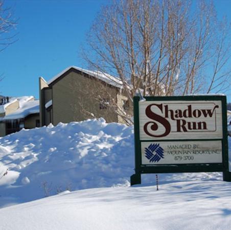 Shadow Run Condominiums: Shadowrun