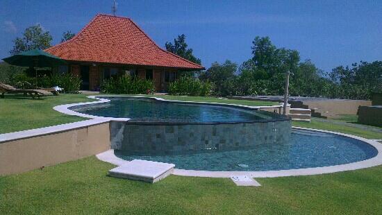 Three Monkeys Villas : pool and 1 of the twin villas.