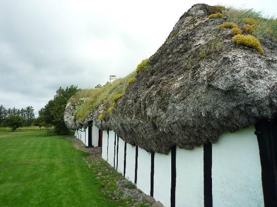Laeso Museum: Tangtaget på Museumsgården Læsø