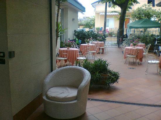 Albergo Hotel Ricchi : Small garden