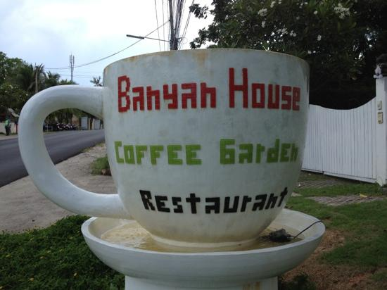 Banyan House Bed & Breakfast: Bayan house coffee garden