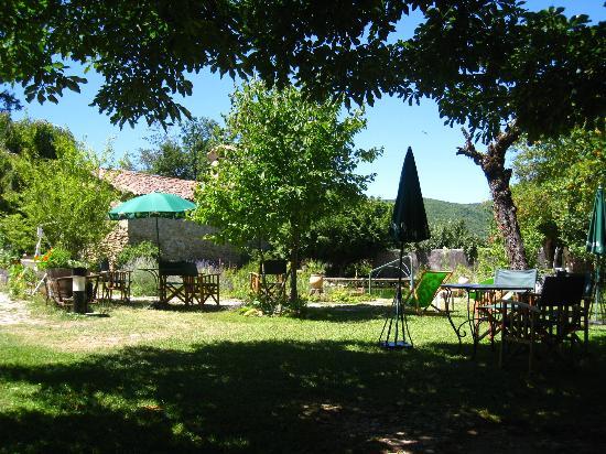 Hotel Bellier : jardin