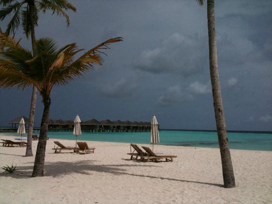 Maafushivaru: Beautiful beach