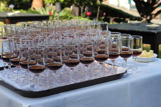 Quinta Do Estreito: Madeira Wein Verkostung im Garten des Hotels