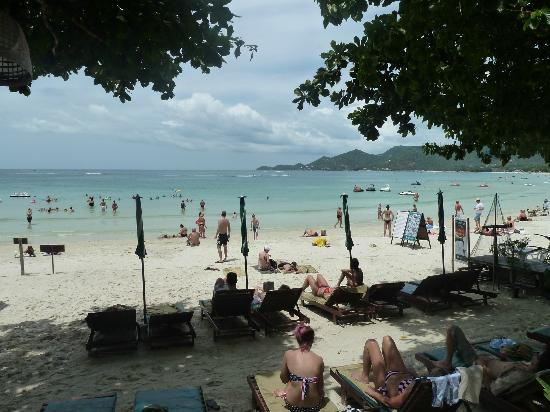 Baan Chaweng Beach Resort & Spa: Plenty of sun lounges available poolside and on your private beach area