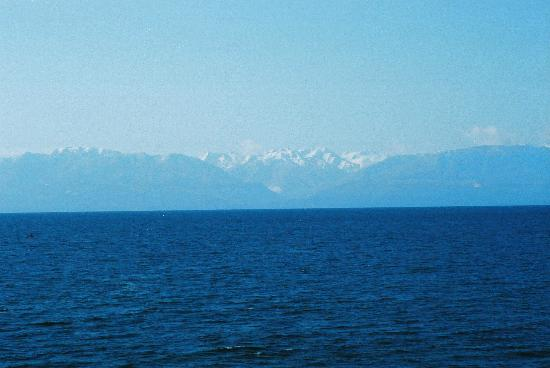Dashwood Manor Seaside Bed and Breakfast Inn: The Olympics across the Strait of Juan de Fuca