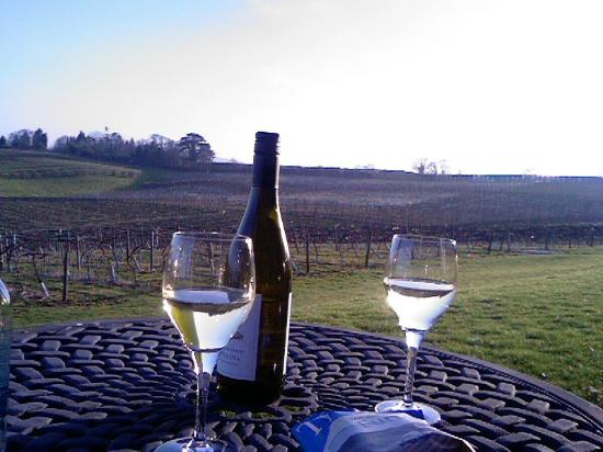 Three Choirs Vineyards: view from patio