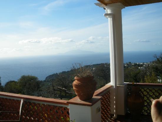 B&B Il Grappolo : Blick auf den Golf von Neapel