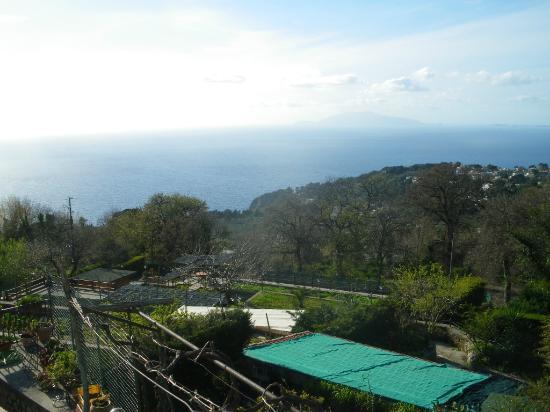B&B Il Grappolo : Ausblick von der Terrasse
