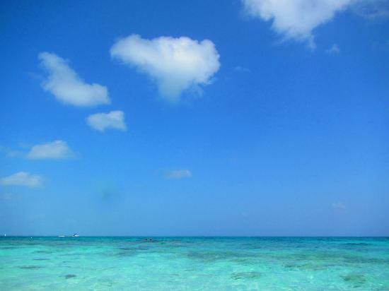 Beaches Turks & Caicos Resort Villages & Spa: THE BEACH VIEW!