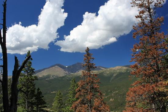 Twin Sisters Peaks Trail: View of Long's Peak about a mile into the hike