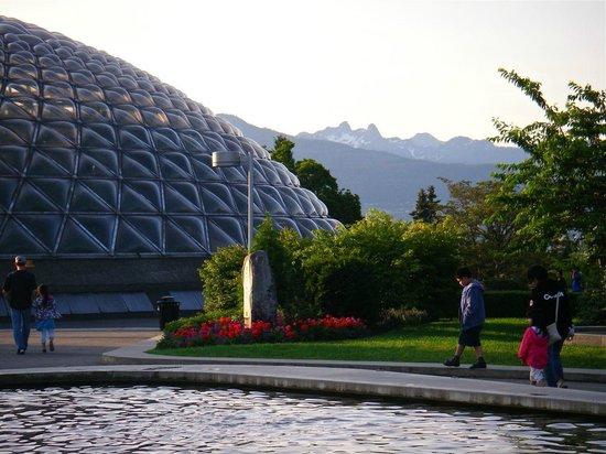Bloedel Conservatory : Domed Bloedel Floral Conservatory
