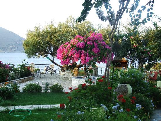 Waterside Apartments: vista della terrazza giardino
