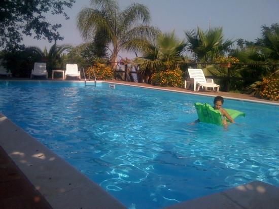 La Masseria B&B: piscina masseria