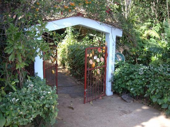 Valle de Vinales: Botanical Garden, Viñales