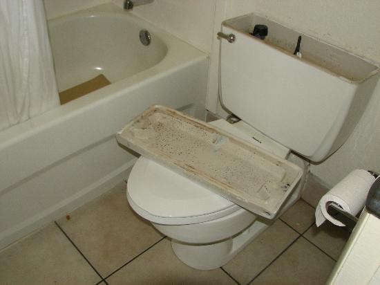 Best Western Savannah Gateway: 1st rm - flooded with sewage on floor