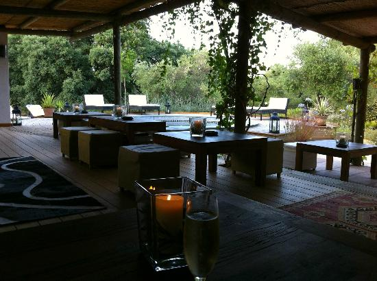 The bar with the plunge pool in the background at the Hoopoe Yurt Hotel