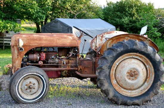 Creekside Bed & Breakfast: This tractor belonged to Mike's grandfather.