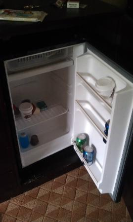 Quality Inn: Spacious Fridge