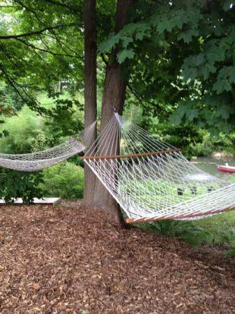 Dove Nest Bed and Breakfast: Hamocks