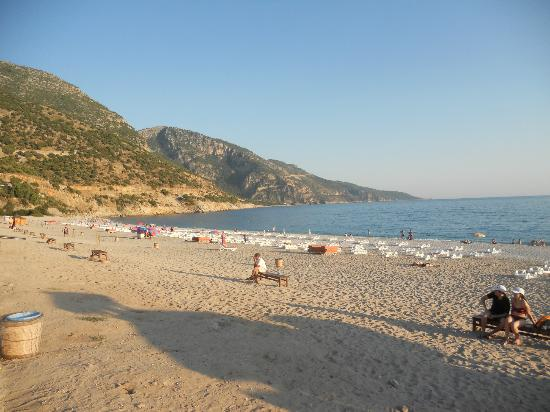 Perdikia Beach Hotel: Tip for beach .... buy beach shoes as it is pebbly to get into the sea