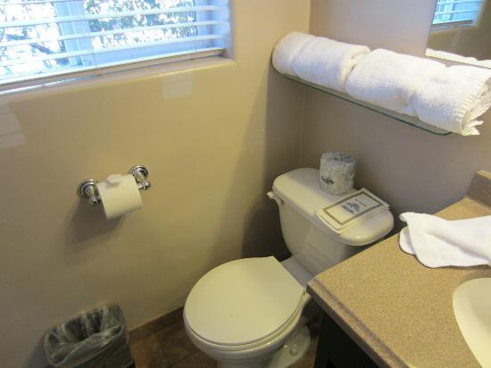 Rodeway Inn San Diego Beach SeaWorld Area: Bathroom