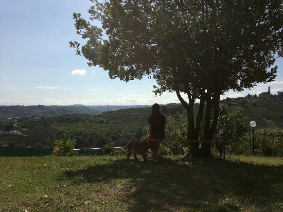 Ai Ciuvin: Agricampeggio ai ciuvin 