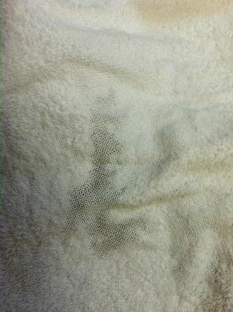 Ramada Limited San Francisco Airport North: Towel so old you could see through it.