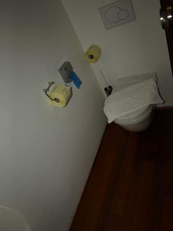 Hotel Rosenvilla: Clean toilet with cute toilet paper (Football Quiz Written)