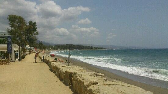 IBEROSTAR Marbella Coral Beach: playa frente al hotel